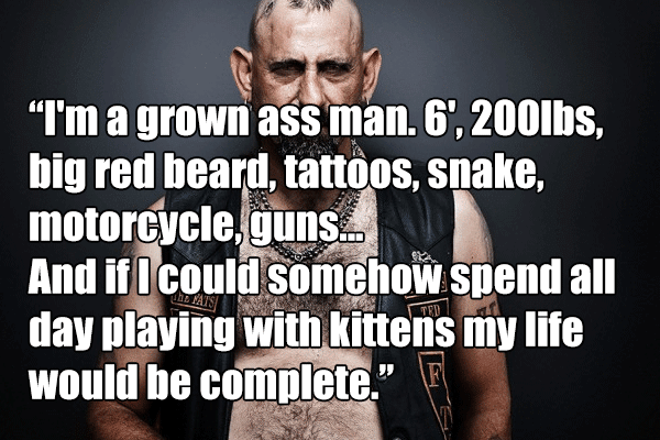 I'm a grown ass man. 6', 200lbs, big red beard, tattoos, snake, motorcycle, guns... And if I could somehow spend all day playing with kittens my life would be complete.