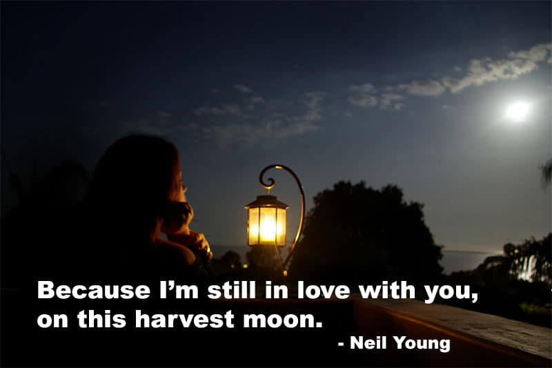 Words: Neil Young / Image