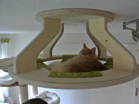 This Purrrrrfect Cat Furniture Is Simply Miaowvellous