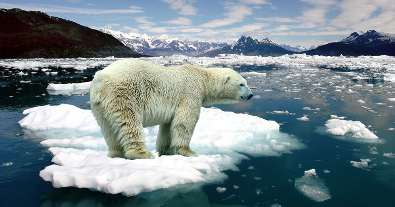 climate change images free 10 climate change facts everyone should know 2349